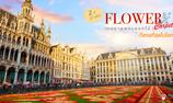 """2 ปีมี 1 ครั้ง !! """"เทศกาลพรมดอกไม้"""" บนจัตุรัสสวยสุดในโลกกลางบรัสเซลส์ ประเทศเบลเยี่ยม"""