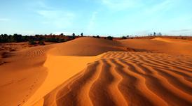 ทัวร์เวียดนามใต้ ดาลัด มุยเน่ 3 วัน 2 คืน ทะเลทรายมุยเน่ น้ำตกดาทันลา บิน VZ