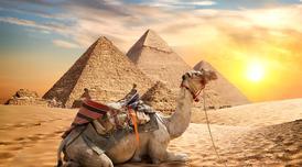 ทัวร์อียิปต์ ไคโร 6 วัน 3 คืน สุสานแห่งอเล็กซานเดรีย มหาพีระมิดแห่งกีซ่า บิน MS