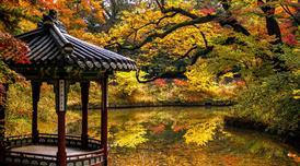 ทัวร์เกาหลี โซล 5 วัน 3 คืน สะพานแขวนมาจัง สวนป่ากรุงโซล อันซานสตาร์ไลท์วิลเลจ บิน ZE