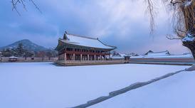ทัวร์เกาหลี โซล 5 วัน 3 คืน หมู่บ้านลาโพรวองซ์ พระราชวังเคียงบ็อก ชมฮอลลีวูดสกายโชว์ บิน OZ