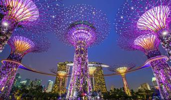 ทัวร์สิงคโปร์ 3 วัน 2 คืน การ์เด้น บาย เดอะเบย์ ชมโชว์ Wonder Full Light บิน SL
