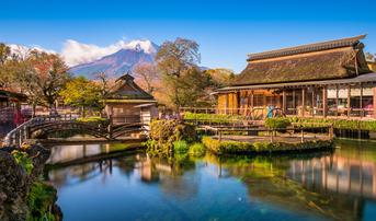 ทัวร์ญี่ปุ่น นาโกย่า ทาคายาม่า โตเกียว 6 วัน 4 คืน ชมทุ่งโคเคีย หมู่บ้านโอชิโนะฮักไก บิน TG (ชมใบไม้เปลี่ยนสี)