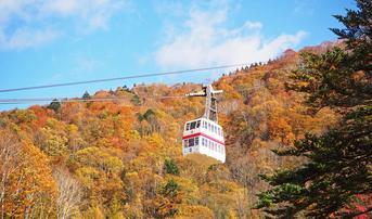 ทัวร์ญี่ปุ่น นาโกย่า ทาคายาม่า 6 วัน 3 คืน เทศกาลชมใบไม้เปลี่ยนสีพร้อมซากุระ กระเช้าไฟฟ้าชินโฮทากะ บิน TG