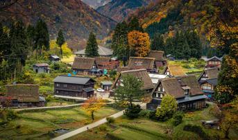 ทัวร์ญี่ปุ่น นาโกย่า ทาคายาม่า โตเกียว 6 วัน 4 คืน หมู่บ้านชิราคาวาโกะ ชมทุ่งโคเคียที่ฮิรุกะโนะโคเก็น บิน TG