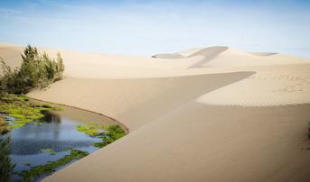 ทัวร์เวียดนามใต้ มุยเน่ ดาลัด โฮจิมินห์ 4 วัน 3 คืน เจดีย์มังกร ทะเลทรายขาว(ไม่รวมค่ากิจกรรม) บิน VN