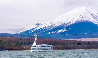ทัวร์ญี่ปุ่น โตเกียว 5 วัน 3 คืน ภูเขาไฟฟูจิชั้น 5 ล่องเรือหงษ์ทะเลสาบยามานะคาโกะ บิน XJ