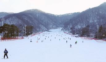 ทัวร์เกาหลี โซล 5 วัน 3 คืน เกาะนามิ กิจกรรมลานสกี สวนสนุกเอเวอร์แลนด์ บิน ZE