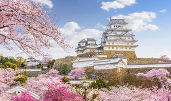 ทัวร์ญี่ปุ่น โอซาก้า เกียวโต 6 วัน 4 คืน อาริมะออนเซ็น ปราสาทฮิเมจิ ชมซากุระริมแม่น้ำคาโมะ บิน XJ