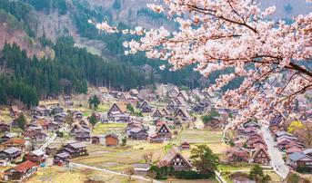 ทัวร์ญี่ปุ่น นาโกย่า ทาคายาม่า 5 วัน 3 คืน หมู่บ้านชิราคาวาโกะ หมู่บ้านโอชิโนะฮัคไค ชมสวนดอกไม้ฮามามัตสึ บิน XJ