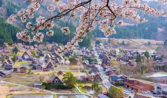 ทัวร์ญี่ปุ่น เกียวโต ทาคายาม่า โอซาก้า 5 วัน 3 คืน หมู่บ้านชิราคาวาโกะ ชมซากุระถนนสายนักปราชญ์ บินXJ