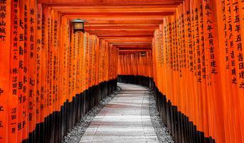 ทัวร์ญี่ปุ่น นาโกย่า ทาคายาม่า เกียวโต 4 วัน 3 คืน หมู่บ้านมรดกโลกชิราคาวาโกะ ศาลเจ้าเทพเจ้าจิ้งจอกอินาริ บิน SL