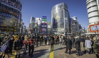 ทัวร์ญี่ปุ่น โตเกียว นิกโก้ 6 วัน 3 คืน ศาลเจ้าโทโชกุ ช้อปปิ้งชิบูย่า นั่งรถไฟลายดอกไม้ บิน NH