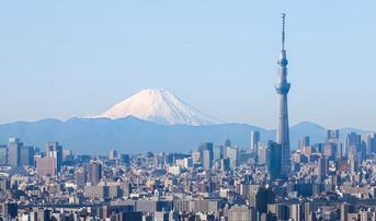 ทัวร์ญี่ปุ่น โอซาก้า โตเกียว 6 วัน 4 คืน ปราสาทโอซาก้า โตเกียวสกายทรี กระเช้าคาจิคาจิ บิน TG