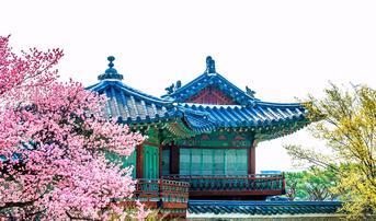 ทัวร์เกาหลี โซล 5 วัน 3 คืน เกาะนามิ สวนสนุกเอเวอร์แลนด์ พระราชวังชางด็อก บิน OZ