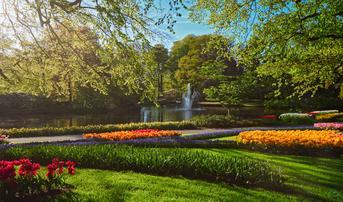 ทัวร์ยุโรป เยอรมัน เนเธอร์แลนด์ เบลเยี่ยม 8 วัน 5 คืน หมู่บ้านกังหันลมซานส์สคันส์ เทศกาลดอกทิวลิปสวนเคอเคนฮอฟ บิน EY