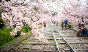 ทัวร์ญี่ปุ่น นาโกย่า โอซาก้า 6 วัน 3 คืน หมู่บ้านชิราคาวาโกะ เส้นทางรถไฟเก่าเคอาเกะอินไคลน์ บิน XJ