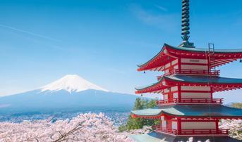 ทัวร์ญี่ปุ่น โตเกียว 5 วัน 3 คืน เจดีย์ชูเรโตะ ชมซากุระสวนอุเอะโนะ บิน XW
