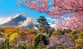 ทัวร์ญี่ปุ่น โอซาก้า เกียวโต ทาคายาม่า 6 วัน 4 คืน หมู่บ้านชิราคาวาโกะ วัดคิโยะมิซุ บิน XJ