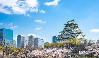 ทัวร์ญี่ปุ่น เกียวโต โอซาก้า 6 วัน 4 คืน วัดทองคินคะคุจิ ปราสาทโอซาก้า บิน TG