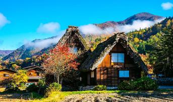 ทัวร์ญี่ปุ่น นาโกย่า ทาคายาม่า 4 วัน 3 คืน หมู่บ้านชิราคาวาโกะ ชมทุ่งดอกโคเกียสวนฮิรุกะโนะ บิน SL