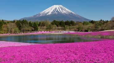 ทัวร์ญี่ปุ่น โตเกียว 5 วัน 3 คืน ภูเขาไฟฟูจิชั้น 5 ชิบะซากุระ บิน SL