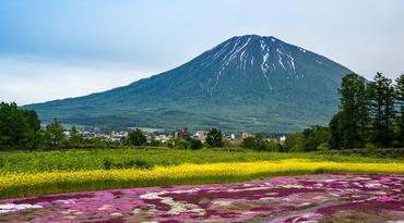 ทัวร์ญี่ปุ่น ฮอกไกโด 5 วัน 3 คืน หุบเขานรกจิโกกุดานิ สวนมิชิมะ สวนทาคิโนะสุสุรัน บิน XJ