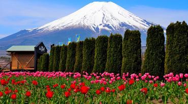ทัวร์ญี่ปุ่น โตเกียว 5 วัน 3 คืน หมู่บ้านโอชิโนะฮัคไค สวนดอกไม้ฮานะโนะมิยาโกะ บิน XJ