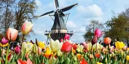 ทัวร์ยุโรป เบลเยี่ยม เนเธอร์แลนด์ ฝรั่งเศส 8 วัน 5 คืน สวนดอกทิวลิปเคอเคนฮอฟ หมู่บ้านแห่งสายน้ำกีธูร์น บิน TG