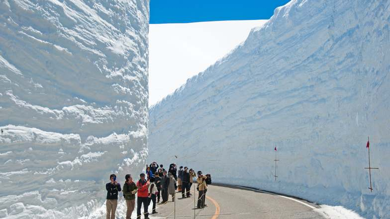 ทัวร์ญี่ปุ่น นาโกย่า ทาคายาม่า โอซาก้า 6 วัน 4 คืน ศาลเจ้าฟูชิมิอินาริ หมู่บ้านชิราคาวาโกะ กำแพงหิมะเจแปนแอลป์ บิน การบินไทย