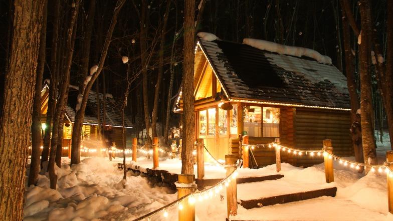ทัวร์ญี่ปุ่น ฮอกไกโด 6 วัน 4 คืน Waku Waku Snowland เทศกาล Snow Night Fantasy บิน การบินไทย (พักออนเซ็น)